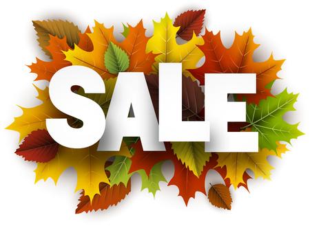 Witte verkoopachtergrond met kleurrijke esdoorn en berkbladeren. Vector illustratie.