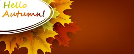 Hallo herfst oker banner met kleurrijke esdoorn bladeren. Vector illustratie. Stock Illustratie