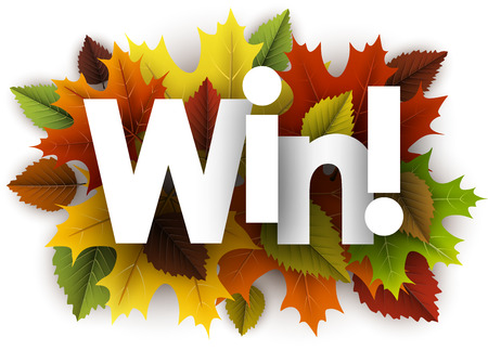 Win autumn background with colorful maple and birch leaves. Vector illustration.