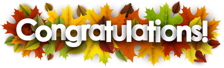 Congratulations autumn banner with colorful maple and birch leaves. Vector illustration.