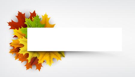 Witte herfst banner met kleurrijke esdoorn en berken bladeren. Vector illustratie.