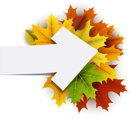 Witte herfst kaart met kleurrijke esdoorn bladeren en pijl. Vector illustratie.