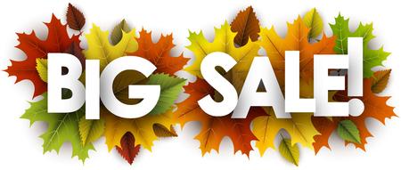 Grote verkoop herfst banner met kleurrijke esdoorn en berken bladeren. Vector illustratie.