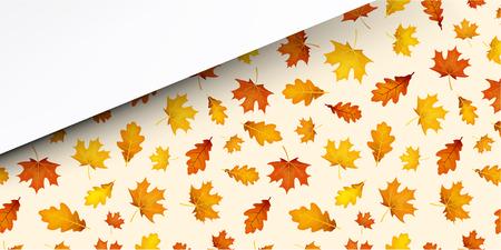 Herfst achtergrond met gouden esdoorn en eikenbladeren patroon. Vector illustratie.