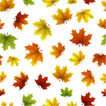 Witte herfst naadloze achtergrond met kleurrijke esdoorn bladeren patroon. Vector illustratie.