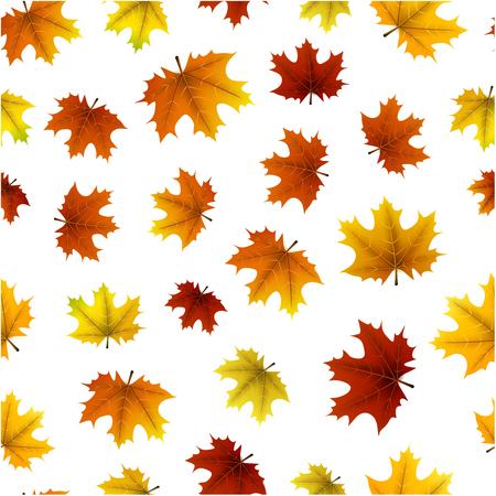 Witte herfst naadloze achtergrond met gouden esdoorn bladeren patroon. Vector illustratie.
