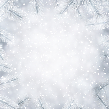 Winter background with white fir branches and snow vector christmas illustration.