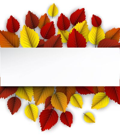 White paper horizontal banner on autumn background with beautiful colorful birch leaves. Season decoration - Vector  Stock Illustratie