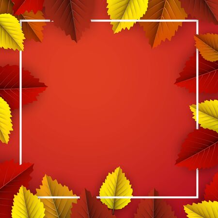 Autumn square background with beautiful colorful birch leaves and white frame. Season decoration - Vector Stockfoto - 128505370