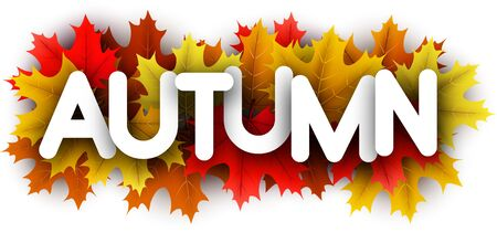 Autumn paper letters over color maple leaves - Vector illustration.