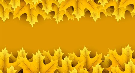 Autumn horizontal banner with beautiful yellow maple leaves. Season decoration - Vector