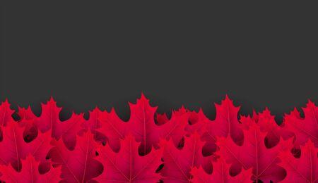 Autumn horizontal banner with beautiful crimson maple leaves. Season decoration - Vector