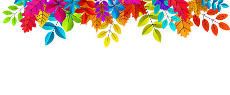 Autumn red, orange, yellow, brown oak and maple leaves top frame. Space for text. Vector illustration.