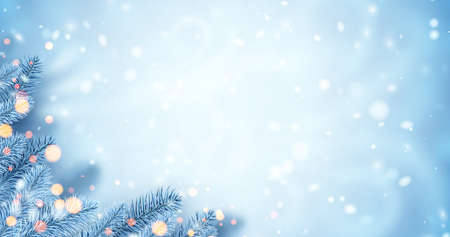 Frosted blue spruce branches. Bokeh lights. Space for text. Winter Xmas vector illustration.