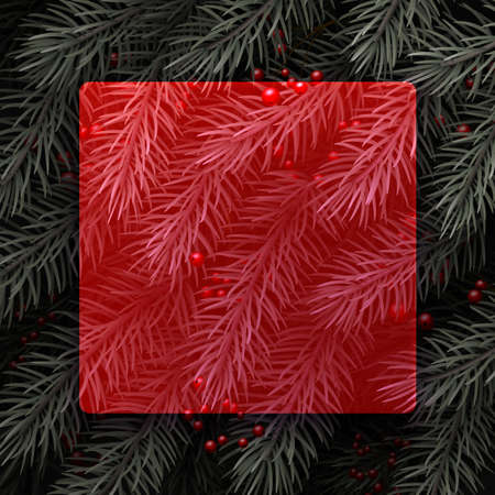 Red semi-transparent new year background. Spruce branch with red berries. Space for text. Vector winter holiday illustration.