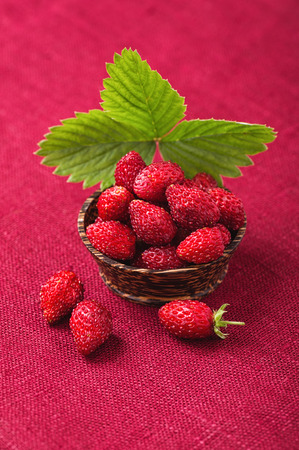 Ripe strawberries in a bowl with leaf