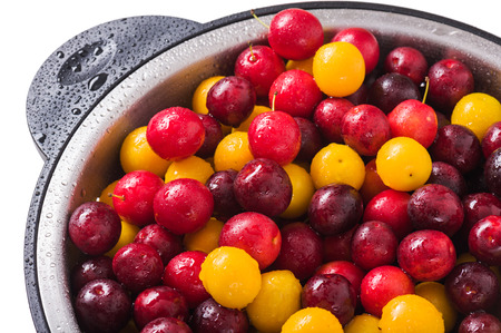 Fresh plums in a colander on a white background Stock Photo
