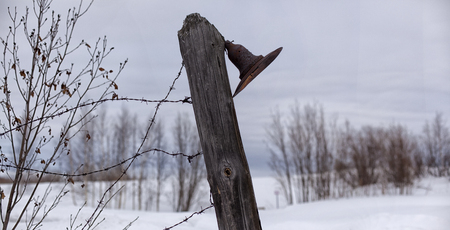 Lamp post and barbed wire in a concentration camp.