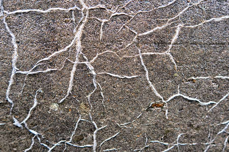 Cracked concrete texture background. Gray surface with cracks close up. A lot of pieces of splintered plaster. Abstract concept of split.