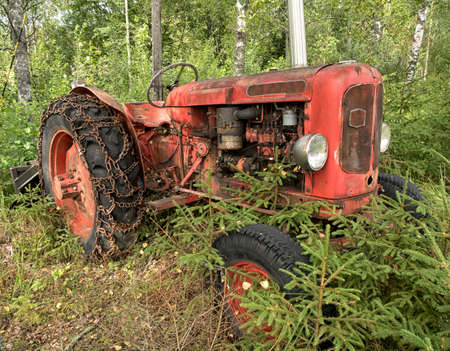 Old red tractor in autumnal forest. Stock Photo