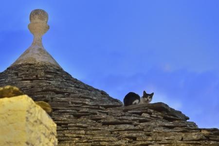 atmosphere construction: Alberobello BA - cat on trulli Stock Photo