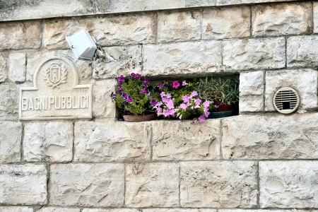 particularly: Locorotondo BA - particularly in the public gardens
