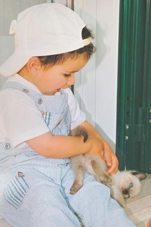 allegro: little rascal with his kitten