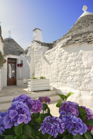 foglie: Flowers in front of the traditional trulli house Stock Photo
