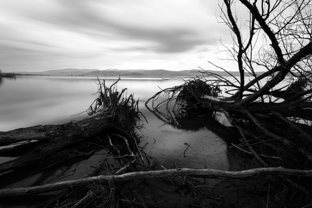 Long exposure view of a lake, with perfectly still water, skelet