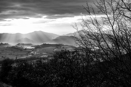 Sunrays coming over a valley in Umbria (Italy) with some plants in the foreground