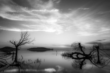 Beautiful sunset at Trasimeno lake (Umbria), with perfectly still water and skeletal trees Imagens