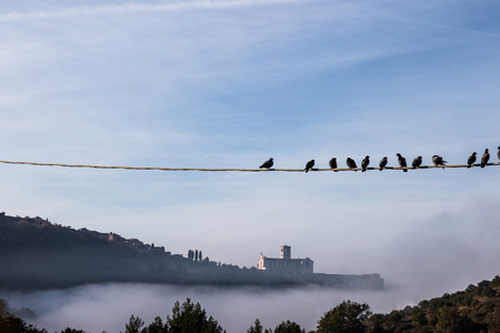 A view of a silhouette of St.Francis church in Assisi iabove a sea of fog,beneath a blue sky with clouds and with birds on a power line in the foreground