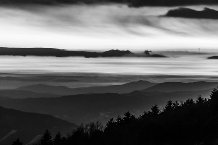 Trees silhouettes against the sky at dusk, with mountains layers in the background Фото со стока