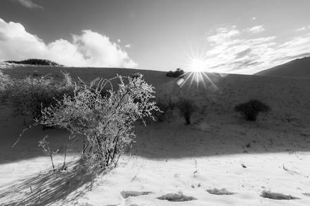 Subasio mountain (Umbria, Italy) in winter, covered by snow, with plants and sun Banque d'images - 122261471