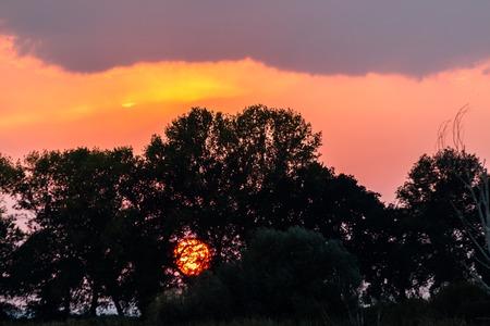 Coucher de soleil avec le soleil descendant de la silhouette des arbres et un ciel magnifiquement coloré