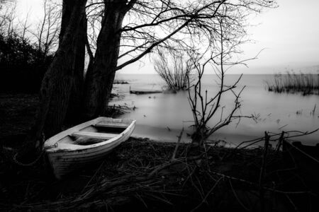 A white, small fishing boat near trees on a lake shore Stok Fotoğraf