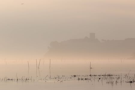 Beautiful view of Trasimeno lake (Umbria) shore at dawn, with Castiglione del Lago town at the distance