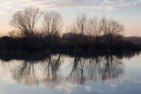 A symmetric photo of a lake, with trees reflections on water.