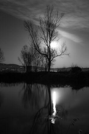 Moon and trees reflecting on the Trasimeno lake surface at night