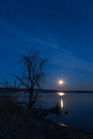 Moon and trees reflecting on the Trasimeno lake surface at night.