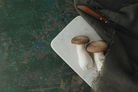 Oyster mushroom on rustic background Imagens