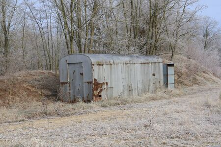 Old rusted white standard container,in the forest