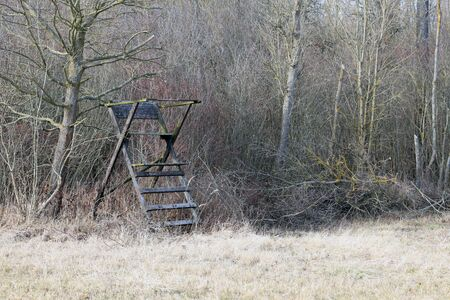 Old simple hunting pulpit. Tree stand, deer stand in the woods. Stock Photo
