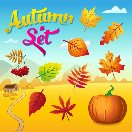 Vector autumn set with autumn leaves, rowan and pumpkin against the background of a beautiful autumn landscape Ilustração