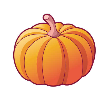 Drawn pumpkin. Vector illustration, icon isolated on white background. Organic vegetarian food for health. Big ripe pumpkin for decoration