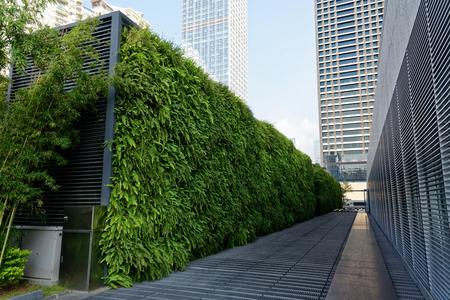 Pared verde hecha de plantas en el centilation aire acondicionado