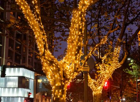 decoration lights: Christmas decoration lights on trees Stock Photo