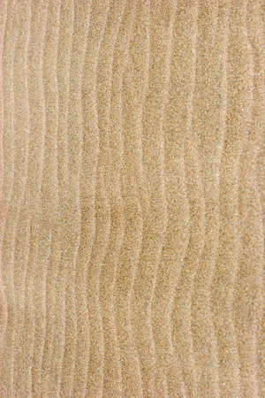 Rippled sand texture or background