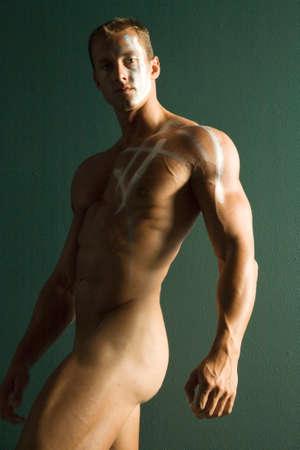 healthy body: Muscular male body builder