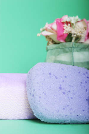 Bath sponge and flowers Фото со стока
